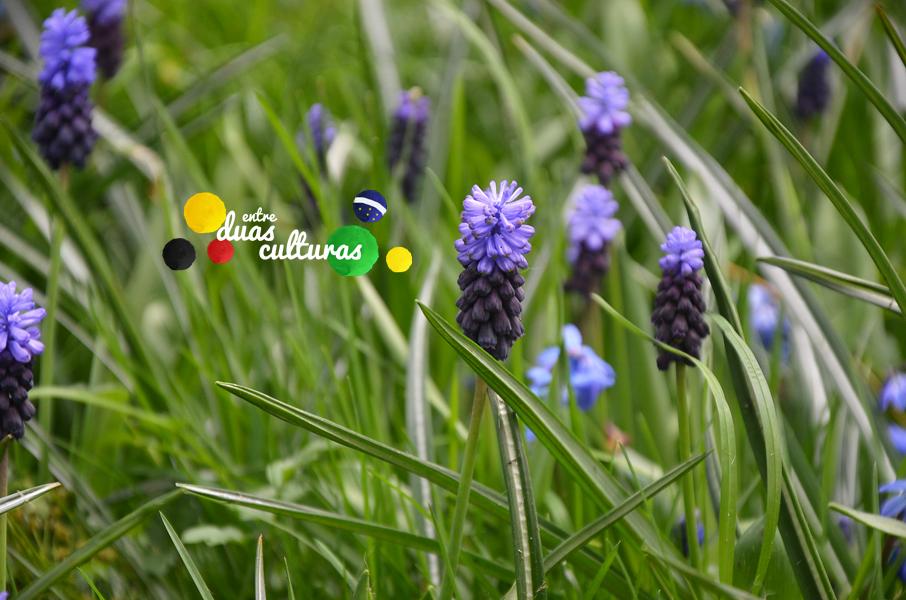 EDC_Primavera_27